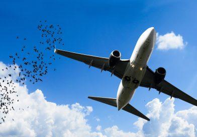 Voorkom verjaring van mogelijke schade door Lelystad Airport…!!!